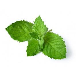E-juice Mint 30ml.